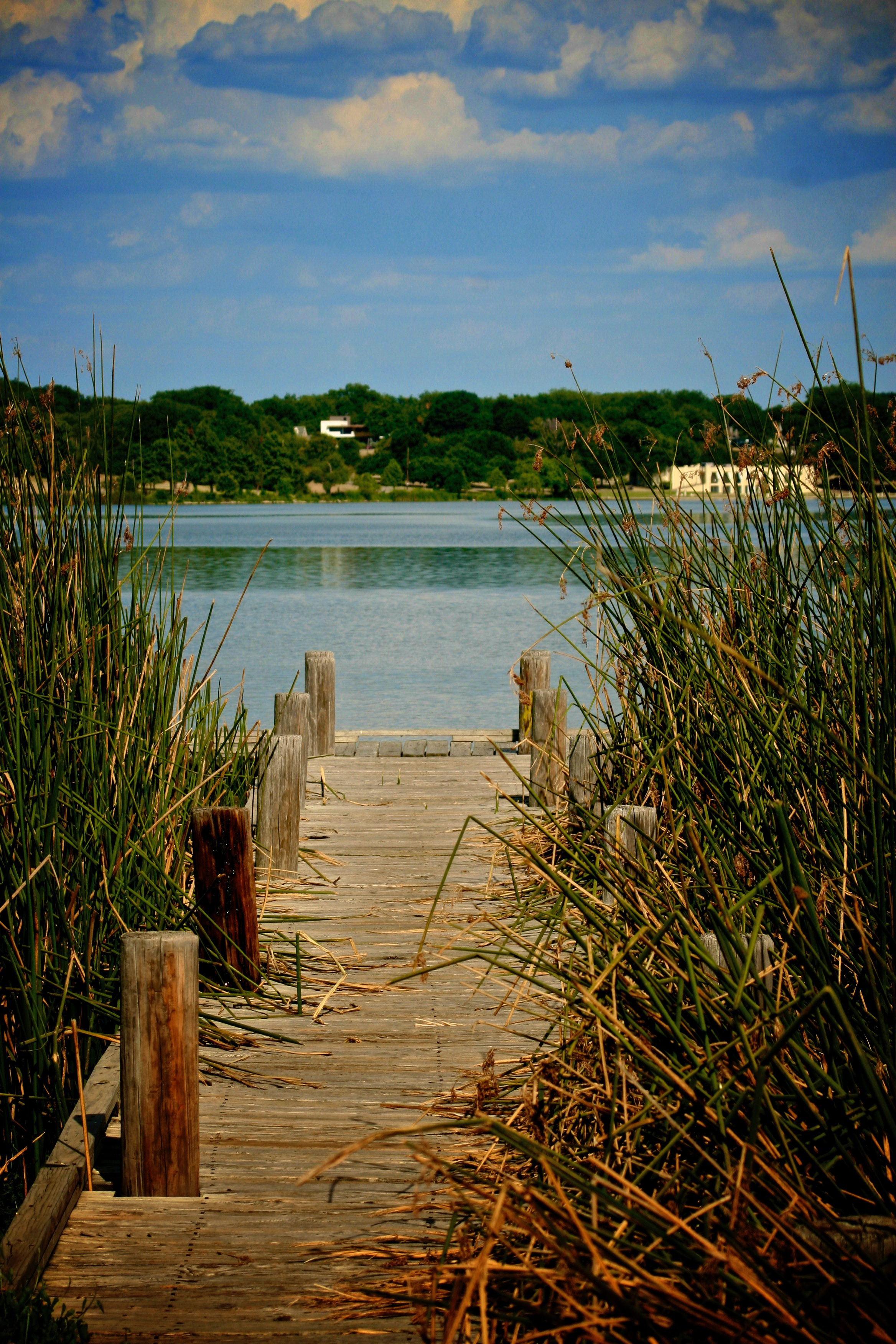 Photo of a dock at whiterock.
